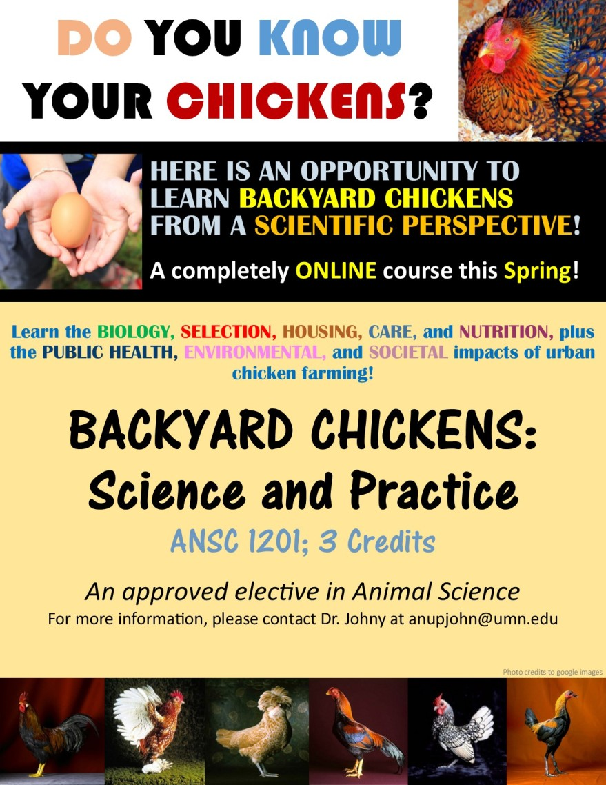 backyard-chickens-flyer-2017